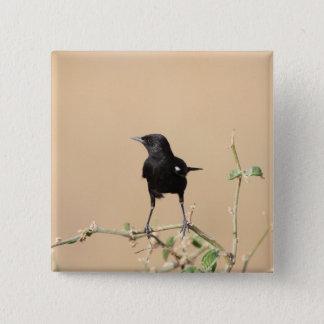 Small Black Bird on Bush Branch Pinback Button