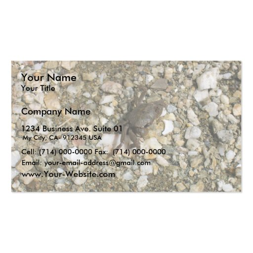 Small Black Crab On The Rocks Business Cards