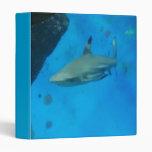 Small Black Tipped Shark Binder