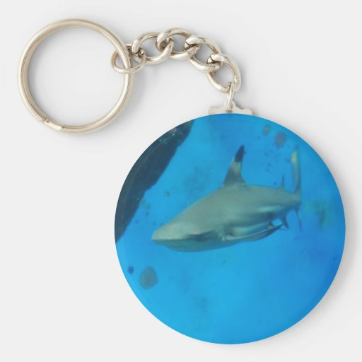 Small Black Tipped Shark Keychain