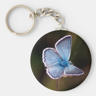 Small Blue Butterfly Keychain