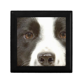 Small Border Collie Gift Box