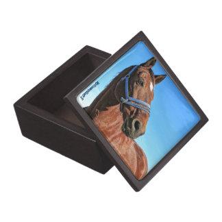 Small box, trinket box, horse, equestrian gift box