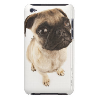 Small breed of dog with short muzzled face barely there iPod cases