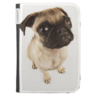 Small breed of dog with short muzzled face. kindle keyboard case