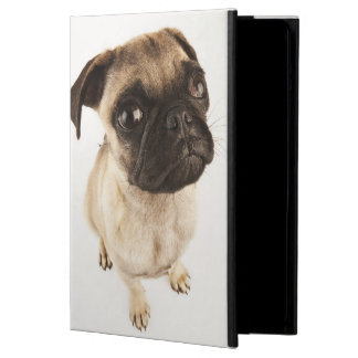 Small breed of dog with short muzzled face iPad air cover