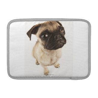 Small breed of dog with short muzzled face. MacBook sleeve
