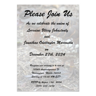 small brown and white duck walking bird 5x7 paper invitation card