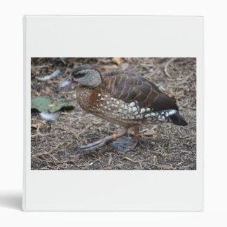 small brown and white duck walking bird vinyl binders