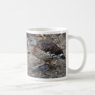 small brown and white duck walking bird coffee mug