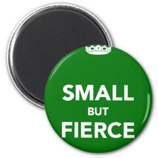 Small But Fierce Magnet