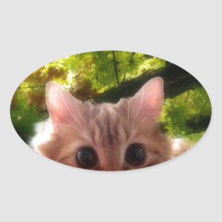 small cat design oval stickers