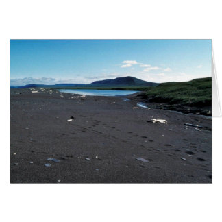 Small coastal pond at Cape Lisburne Greeting Card