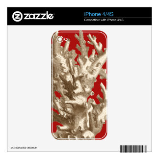 Small Coral in Red Skins For The iPhone 4S