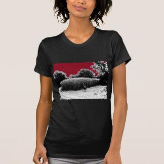 Small Cornfield with Dark Red Sky T-Shirt