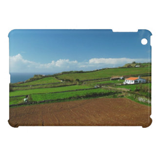 Small cottage and pastures case for the iPad mini