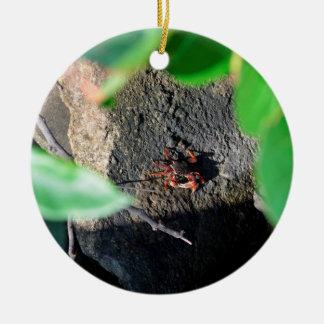small crab sea grape frame on rock animal ceramic ornament