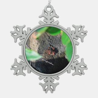 small crab sea grape frame on rock animal snowflake pewter christmas ornament