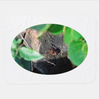 small crab sea grape frame on rock animal stroller blanket