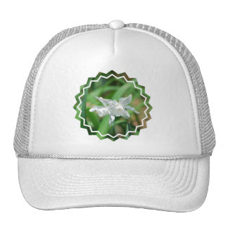 Small Cup Daffodils Baseball Hat