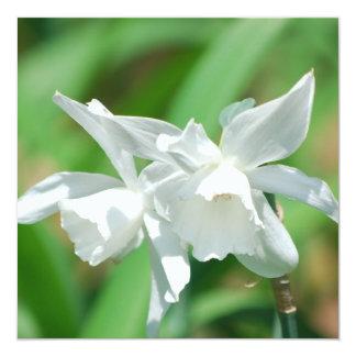 Small Cup Daffodils Invitations