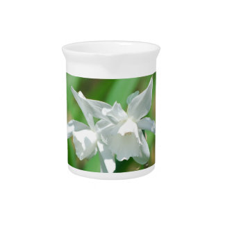 Small Cup Daffodils Pitcher