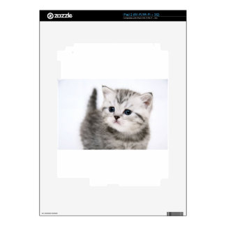 Small Cute Kitty Skin For iPad 2