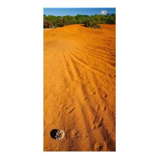 Small desert card