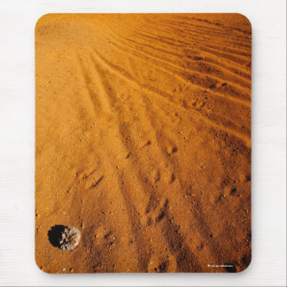 Small desert mouse pad