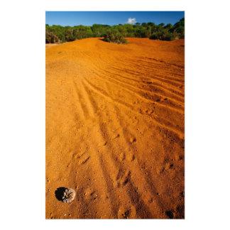 Small desert photo print