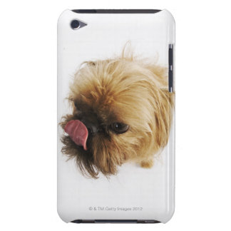 Small dog on white background, high angle view iPod touch case