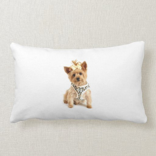 Small dog throw pillow zazzle for Small toss pillows