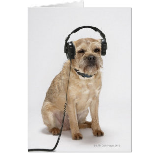Small dog wearing headphones greeting card
