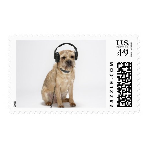 Small dog wearing headphones postage
