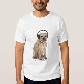 Small dog wearing headphones shirt