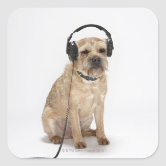 Small dog wearing headphones square sticker