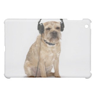 Small dog wearing heads iPad mini covers