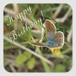 Small female blue butterfly square sticker