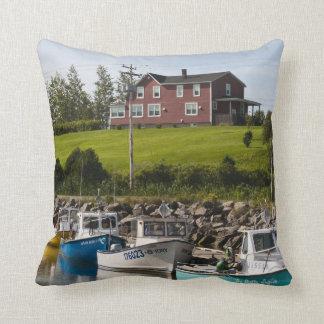 Small fishing village near Grande-Riviere, Throw Pillow
