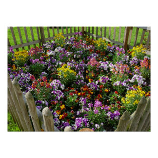 small flower garden with wood fence, poster