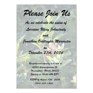 """Small flowers in green plant nature leaves 5"""" x 7"""" invitation card"""