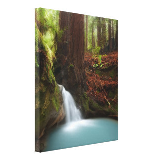 Small forest waterfall gallery wrapped canvas