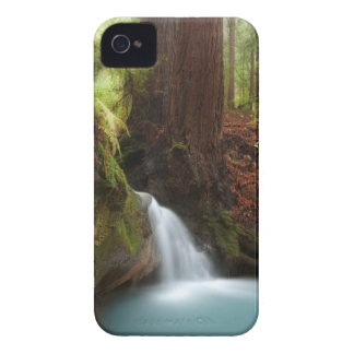 Small forest waterfall Case-Mate iPhone 4 case