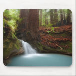 Small forest waterfall mousepads