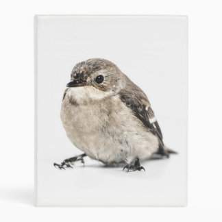 Small Garden Bird Photo Mini Binder