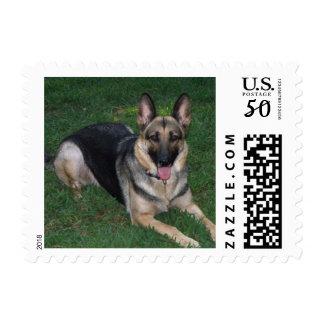 Small German Shepherd Postage