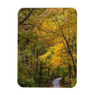 Small Gravel Road Lined With Autumn Color Magnet