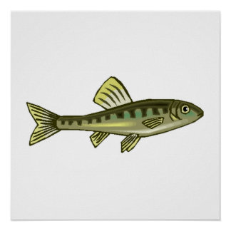 Small Green Fish Poster