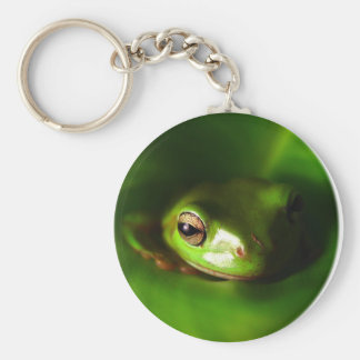 small green frog in green leaf key chain