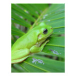Small Green Frog Personalized Letterhead